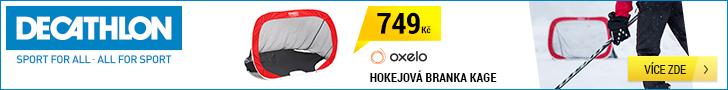 Hokejová branka (728×90/320×50)